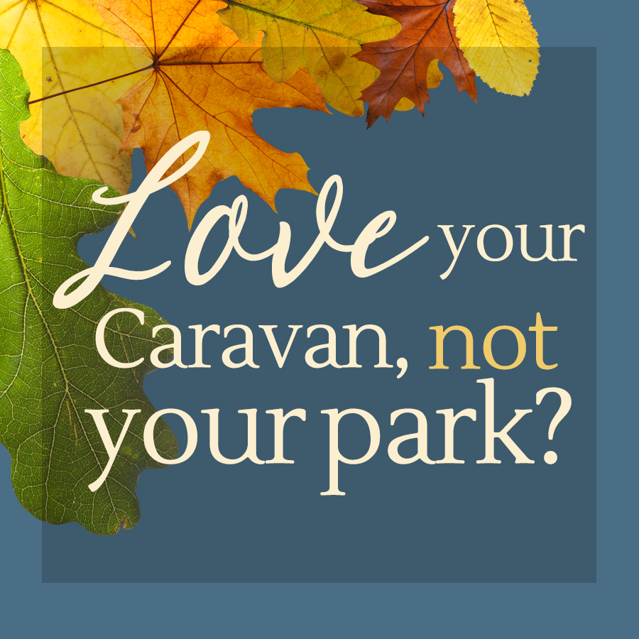 Autumn web banner promotion - love your caravan, not your park?